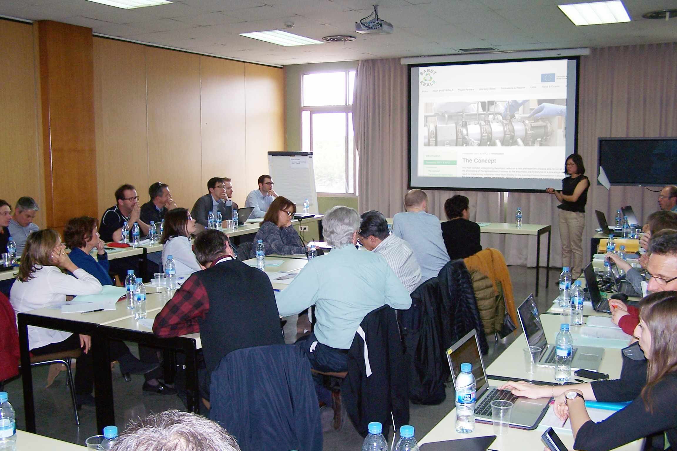 Second progress meeting of the BABET-REAL5 project at CIEMAT in Madrid